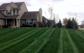 Lawn Care - commercial & residential